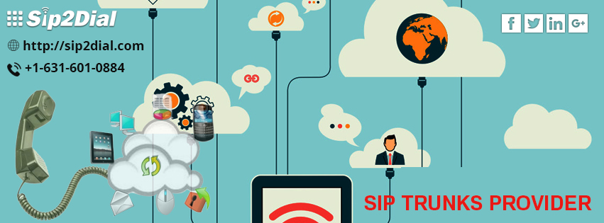 Sip service provider: price, information and solution
